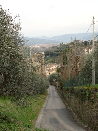 A path in the hills of Florence, Italy.