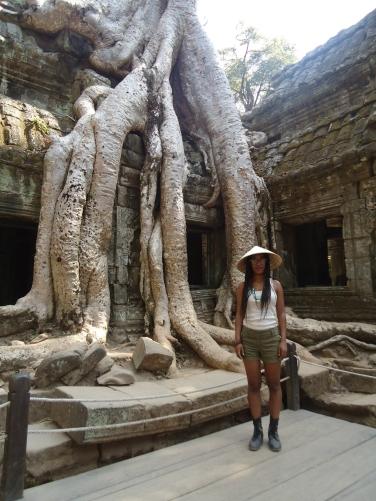 Tree Cambodia
